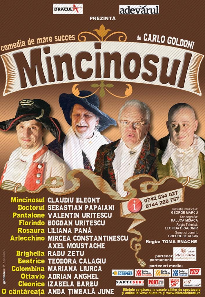 MINCINOSUL-2009